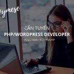 Tuyển dụng Lập trình viên WordPress