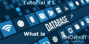 Cơ sở dữ liệu là gì